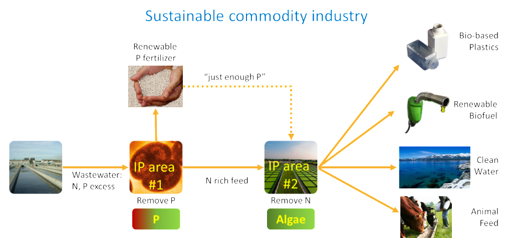 piarcs_sustainability_01